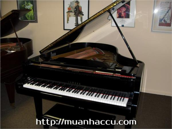 Grand Piano Yamaha G5