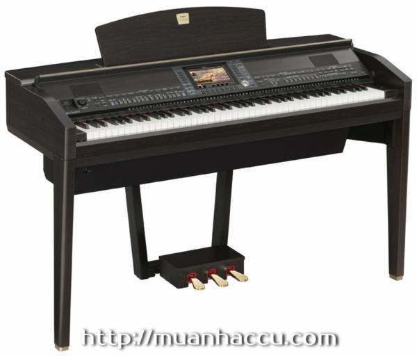 Yamaha Clavinova Piano CVP 509