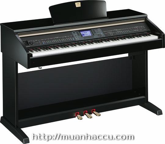 Yamaha Clavinova Piano CVP 501