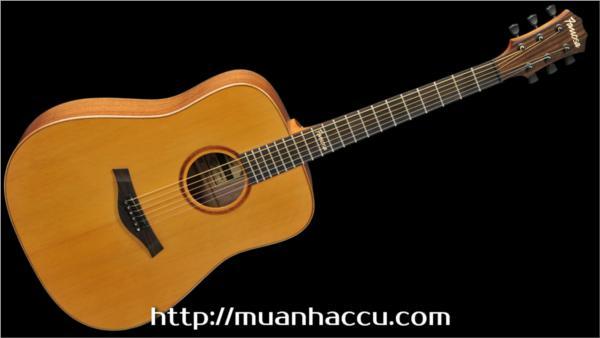 Famosa Acoustic Guitar FD425C