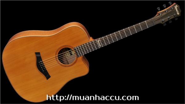 Famosa Acoustic Guitar FD425CU