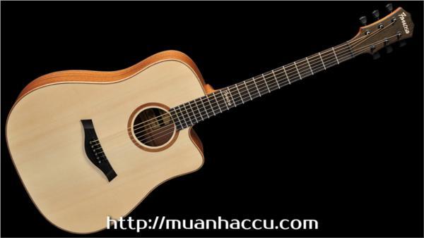 Famosa Acoustic Guitar FD425SU