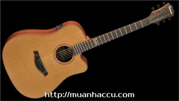 Famosa Acoustic Guitar FD425CUE