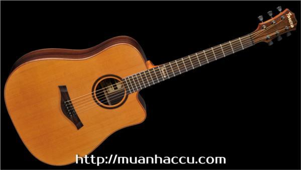 Famosa Acoustic Guitar FD535CU