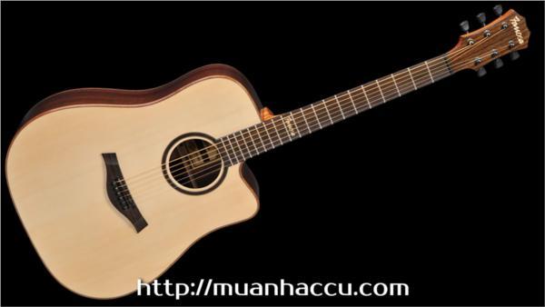 Famosa Acoustic Guitar FD535SU