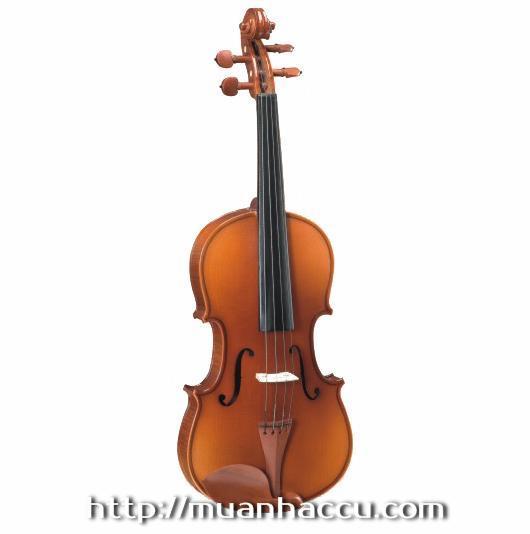 Carlo giordan Violin 2/4, 3/4
