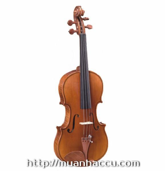Shifen Violin 1/4, 2/4, 3/4, 4/4