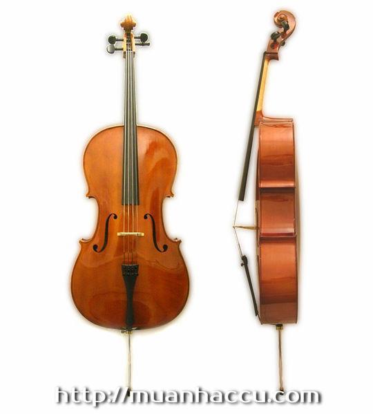 Scott Cao Cello STC150
