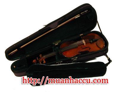 Scott Cao Violin STV-017CE