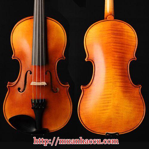 Scott & Guan Violin 017N
