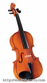 Kapok Viola M020
