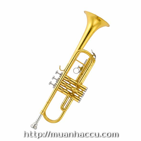 Trumpet b-B Lacquered /Nickel/Silvergilt