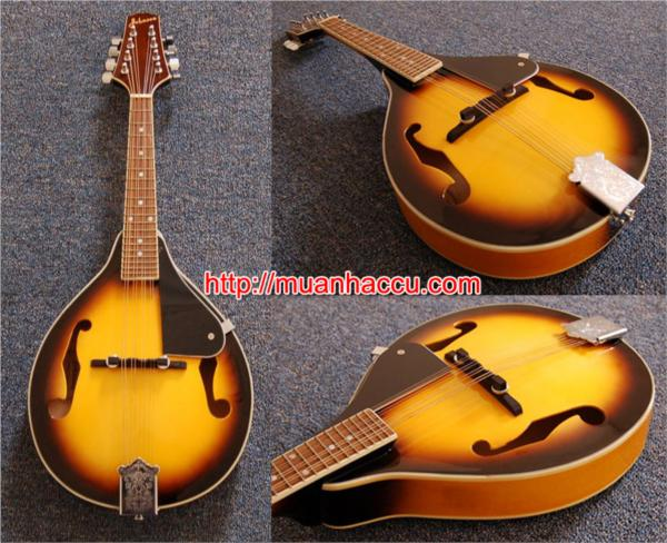 Mandolin M-1