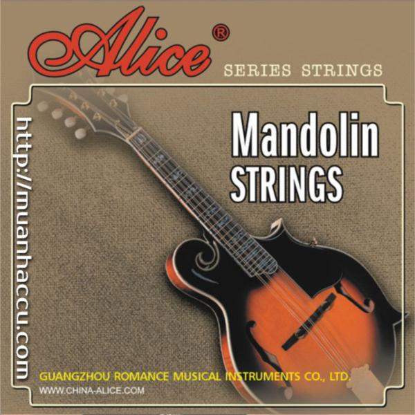 Mandolin Strings AM04
