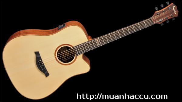 Famosa Acoustic Guitar FD425SUE