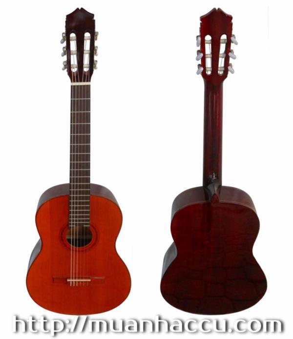 Classic Guitar Việt Nam G120