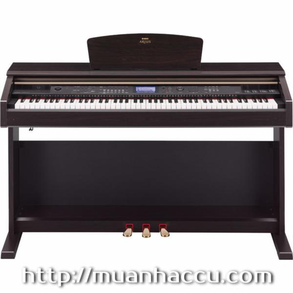 Yamaha Digital Piano YDP-V240