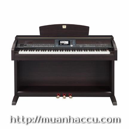 Yamaha Clavinova Piano CVP 503