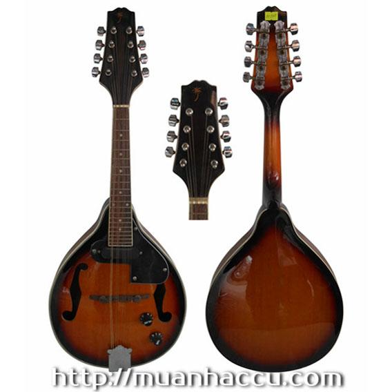 Electric Mandolin M190
