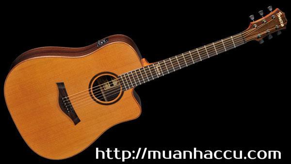 Famosa Acoustic Guitar FD535CUE