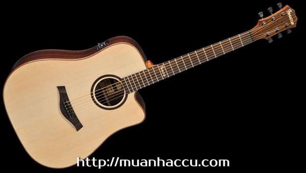 Famosa Acoustic Guitar FD535SUE