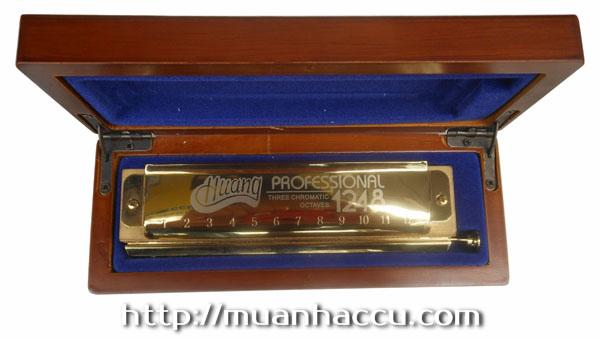 Kèn Harmonica Huang Professional 1248 (Three chromatic octaves, Huang 112-1)