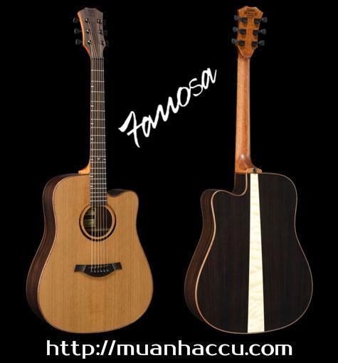 Famosa Acoustic Guitar FD550CU