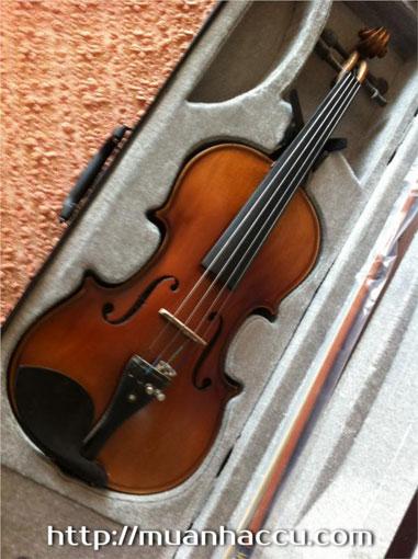Đàn Violin vân thật