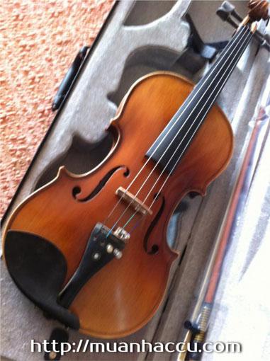 Đàn Violin Vân Vẽ