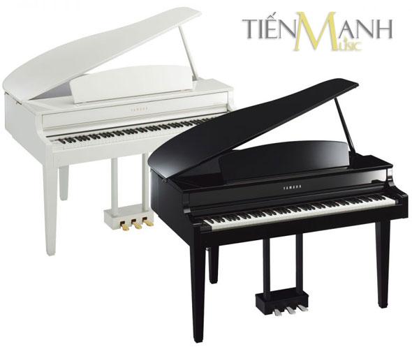 Yamaha Clavinova Piano CLP-565GP