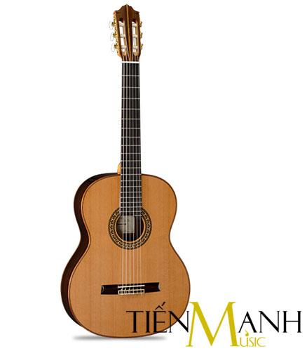 Đàn Guitar Classic Famosa FC 40C