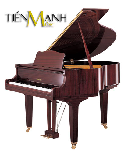 Đàn Piano Yamaha Grand GB1K PM
