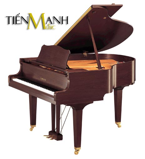 Đàn Piano Yamaha Grand GC1 PM