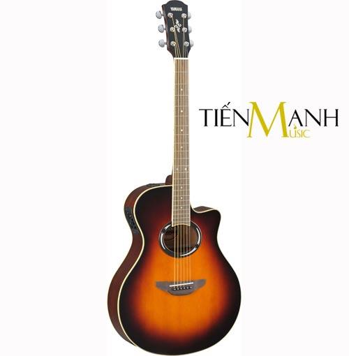 Đàn Guitar Acoustic Yamaha APX500II
