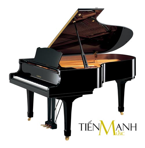 Đàn Piano Yamaha Grand  C5 PE