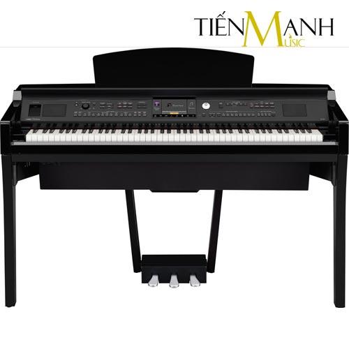Đàn Piano Yamaha Clavinova CVP-709 PE