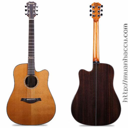 Đàn Guitar Acoustic Famosa D-5CU NA