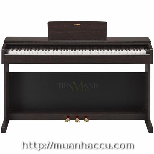 Đàn Piano Điện Yamaha YDP-143R