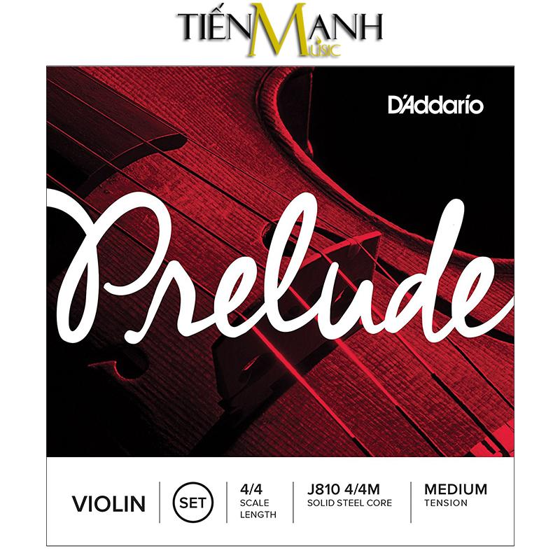 Dây Đàn Violin DAddario Prelude Medium Tension J810 4/4M