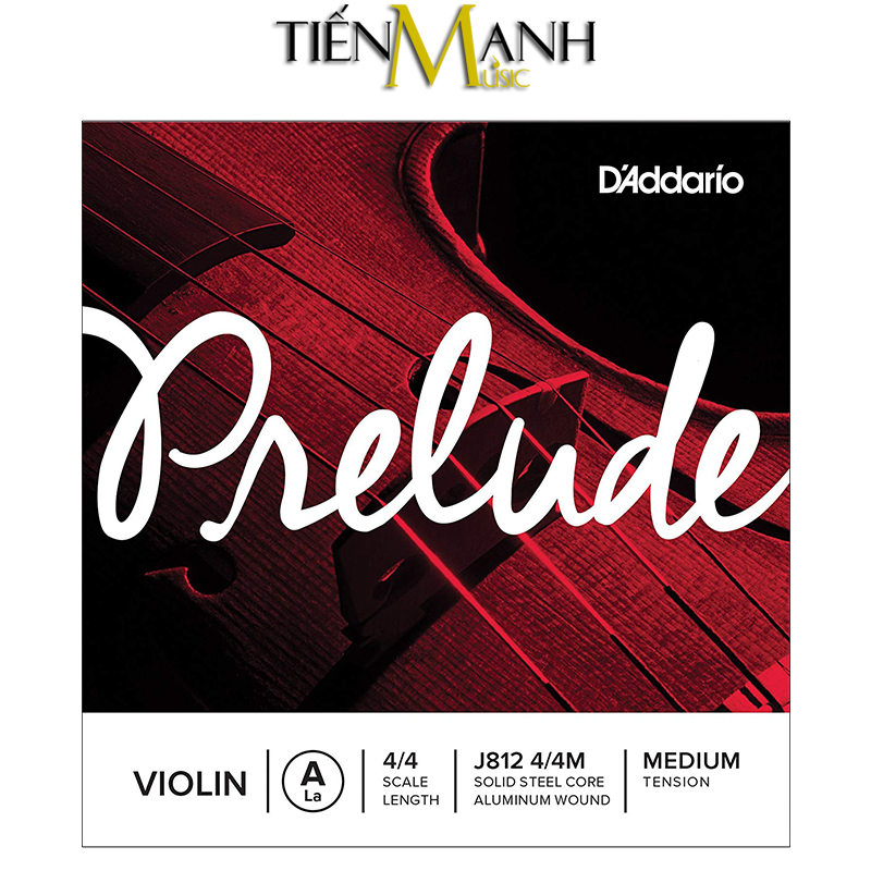 Dây lẻ - Đàn Violin DAddario Prelude Medium Tension J812 4/4M (La - A)