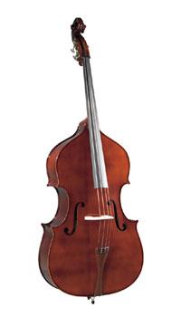Kapok Double Bass
