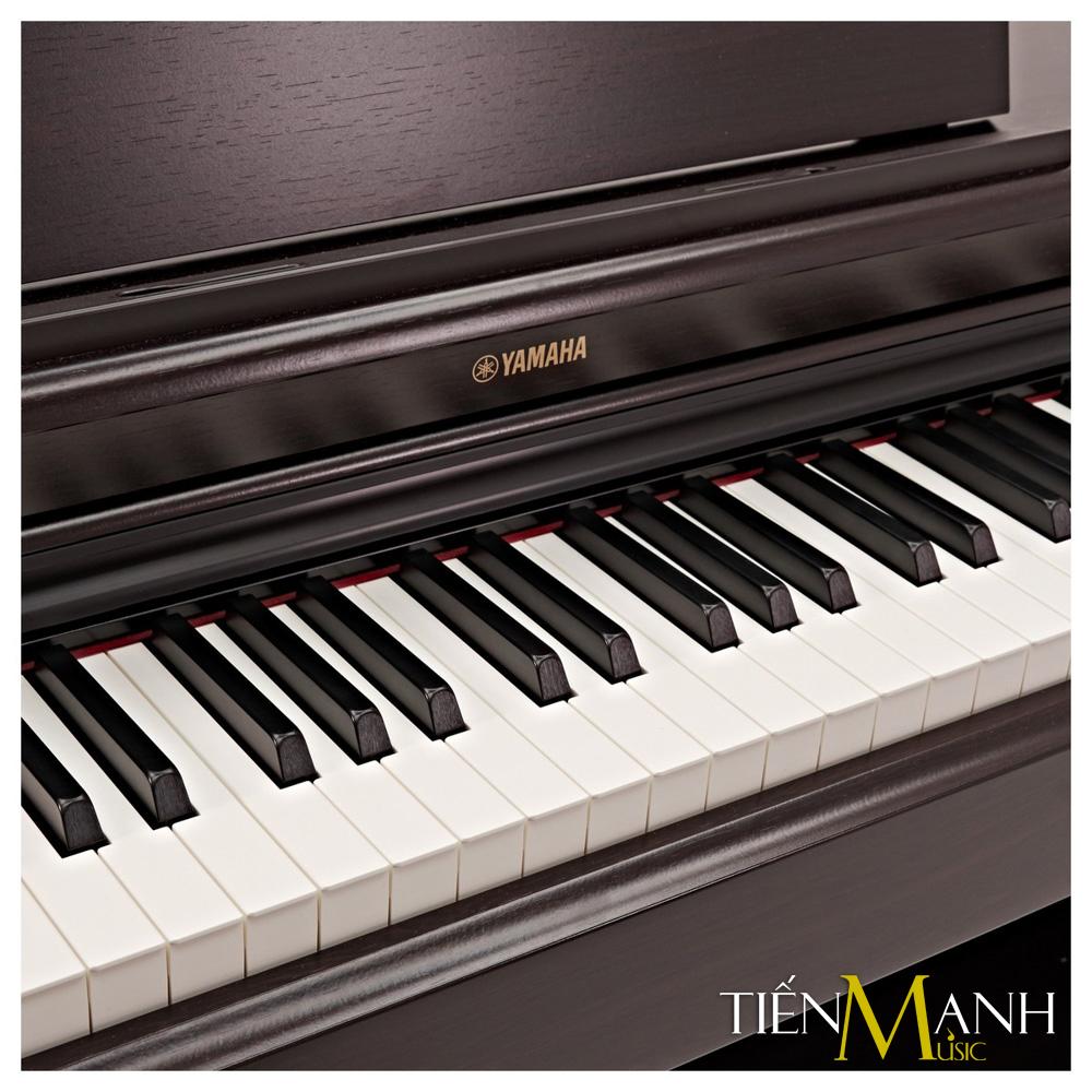 Đàn Piano Điện Yamaha Arius YDP-164R