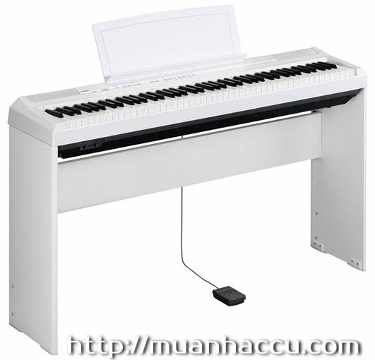 Yamaha Digital Piano P-105 (2 màu Đen & Trắng)