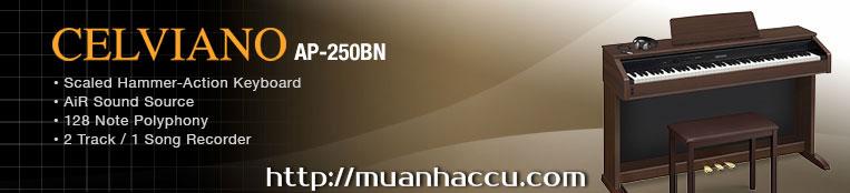Đàn Piano điện Casio AP-250BN