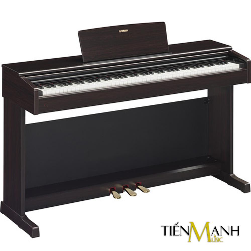 Đàn Piano Điện Yamaha Arius YDP-144R