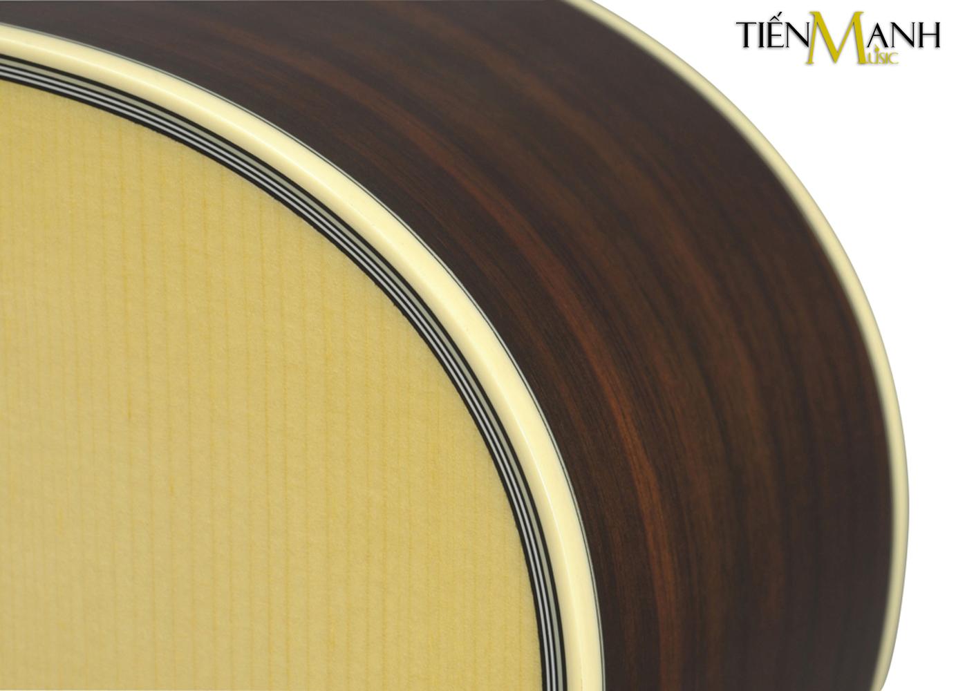 Đàn Guitar Acoustic Yamaha LS6 ARE