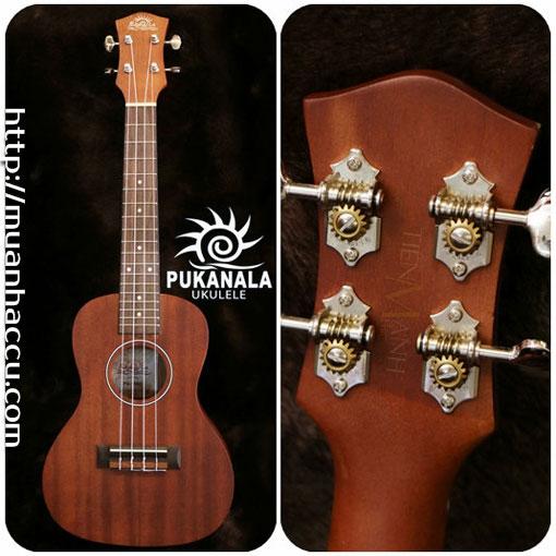 Đàn Ukulele Pukanala Concert PU-15KC