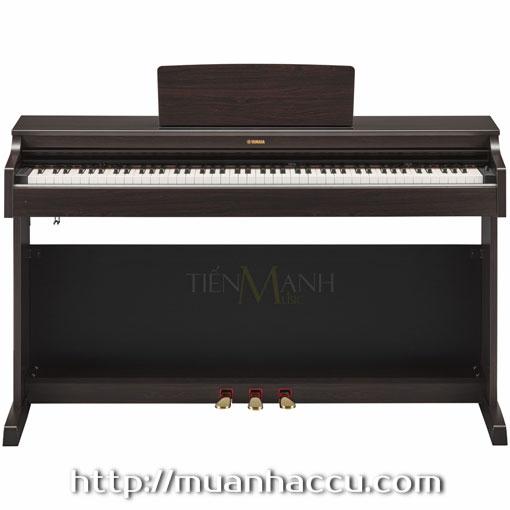 Đàn Piano Điện Yamaha YDP-163R